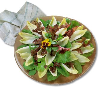 Celery, Blue Cheese And Hazelnut Salad Recipes — Dishmaps